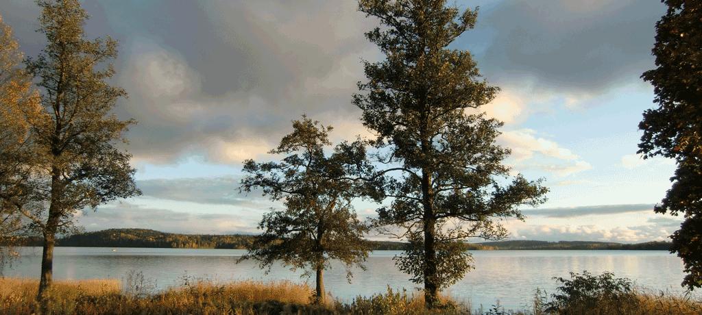 Molkomsjön